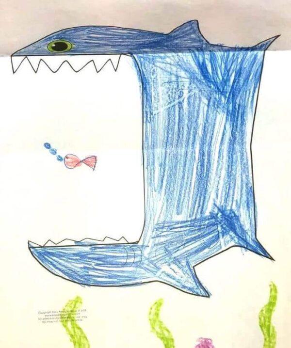 """Faltvorlage 2 zu """"Der Hai"""""""