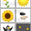 Bildset Sonnenblume Voransicht
